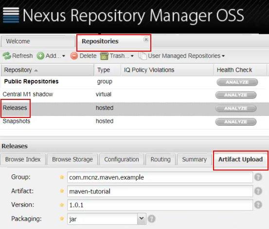 Admin console for Nexus tutorial